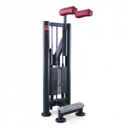 Calf Machine Panatta Sport SEC